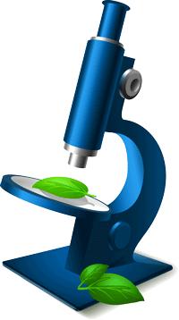VR microscope