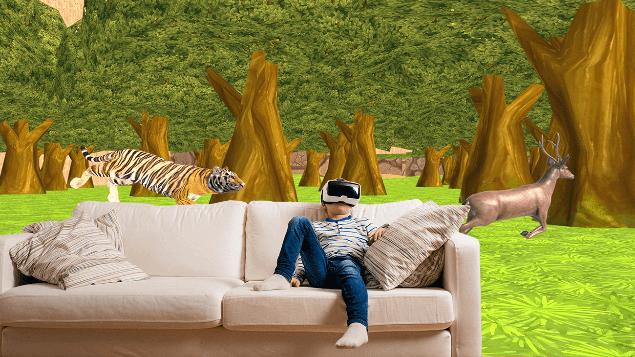 VR immersive environment
