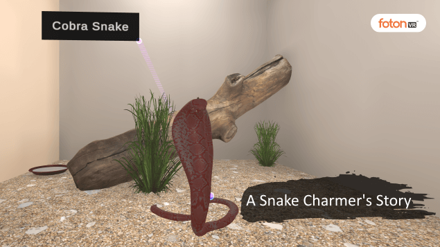 A Virtual Tour of Chapter 2 A Snake Charmer's Story
