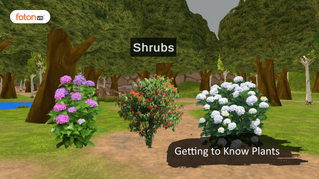 A Virtual Tour of Chapter 7 Getting to Know Plants