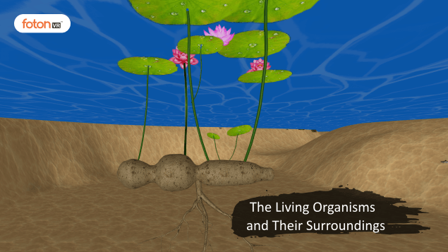 A Virtual Tour of Chapter 9 The Living Organisms and Their Surroundings
