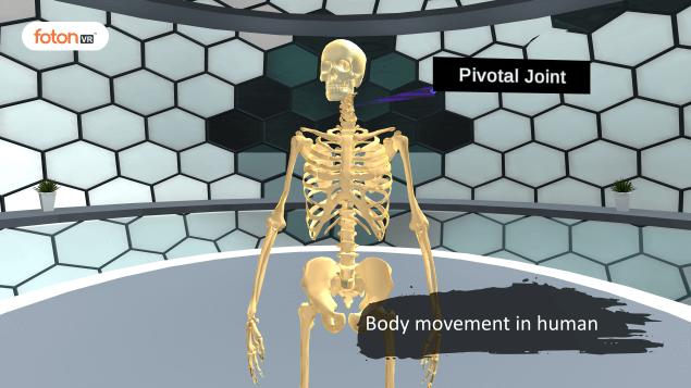 Virtual tour 1 Body movement in human