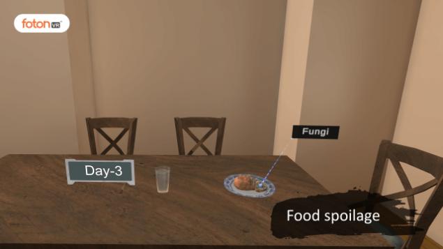 Virtual tour 1 Food spoilage