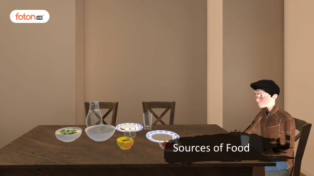 Virtual tour 1 Sources of Food