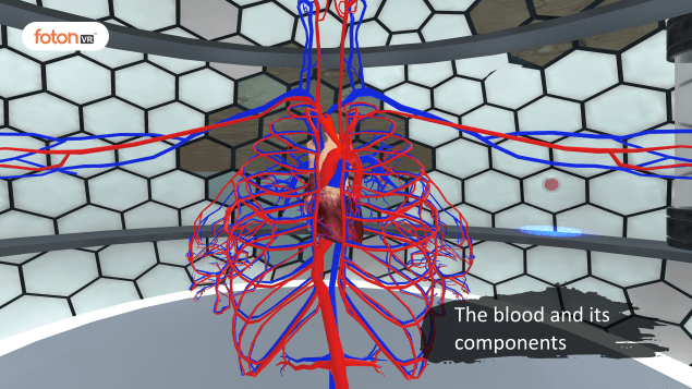 Virtual tour 1 The blood and its components