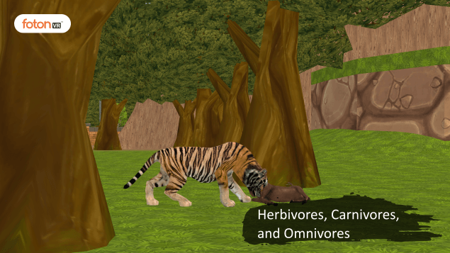 Virtual tour 2 Herbivores, Carnivores, and Omnivores