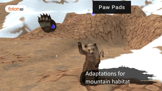 Virtual tour 3 Adaptations for mountain habitat