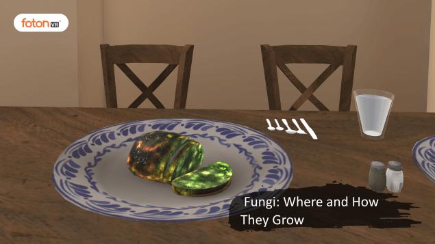 Virtual tour 3 Fungi Where and How They Grow