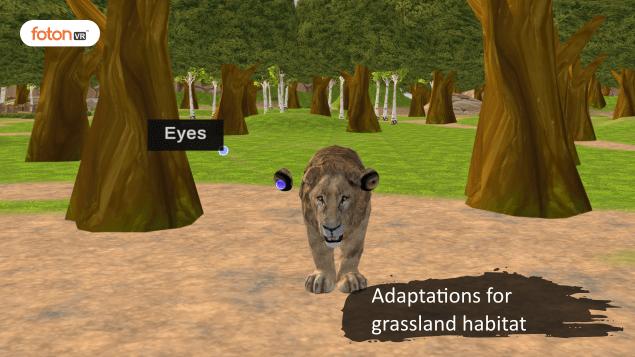 Virtual tour 4 Adaptations for grassland habitat