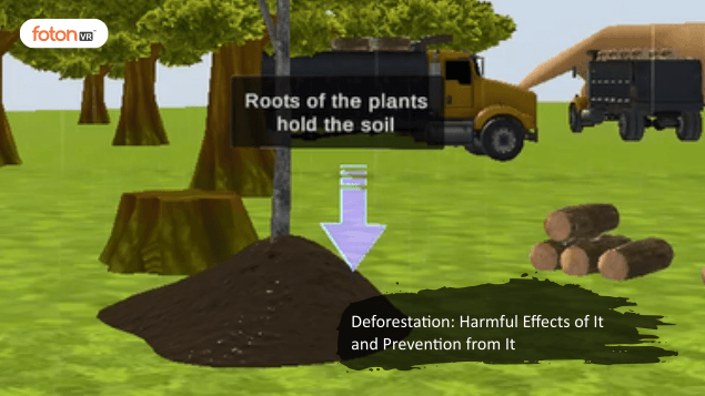 Virtual tour 4 Deforestation Harmful Effects of It and Prevention from It