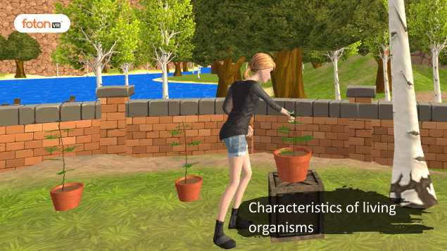 Virtual tour 5 Characteristics of living organisms