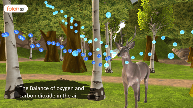 Virtual tour 6 The Balance of oxygen and carbon dioxide in the air