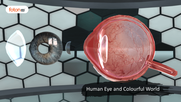 A Virtual Tour of Chapter 11 Human Eye and Colourful World