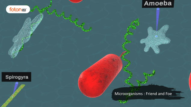 A Virtual Tour of Chapter 2 Microorganisms