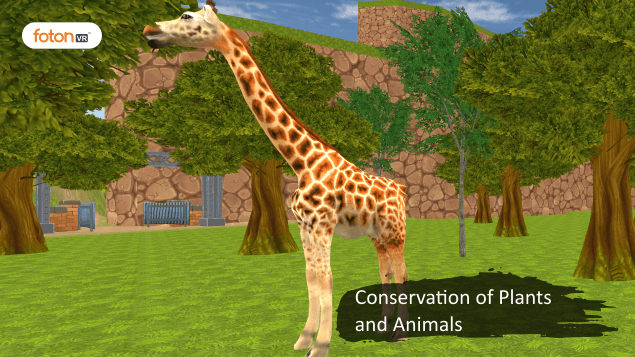 A Virtual Tour of Chapter 7 Conservation of Plants and Animals