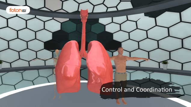 A Virtual Tour of Chapter 7 Control and Coordination
