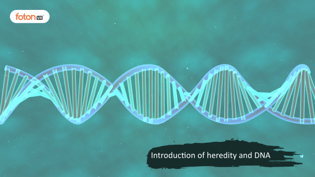 Virtual tour 1 Introduction of heredity and DNA