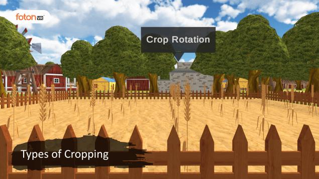 Virtual tour 1 Types of Cropping