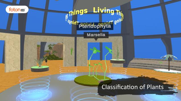 Virtual tour 3 Classification of Plants