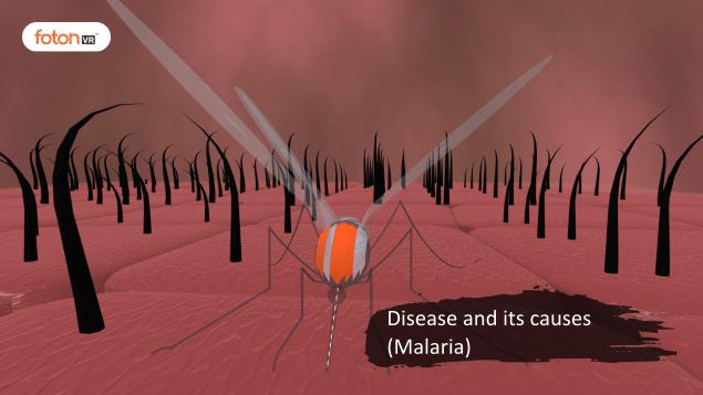 Virtual tour 4 Disease and its causes (Malaria)