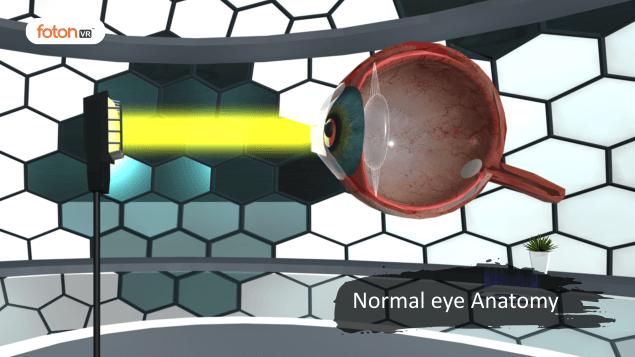 Virtual tour 4 Normal eye Anatomy