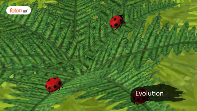 Virtual tour 5 Evolution