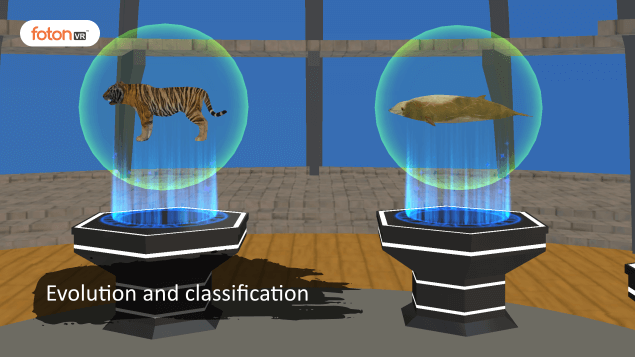 Virtual tour 6 Evolution and classification