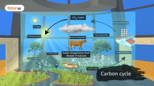 Virtual tour 8 Carbon cycle